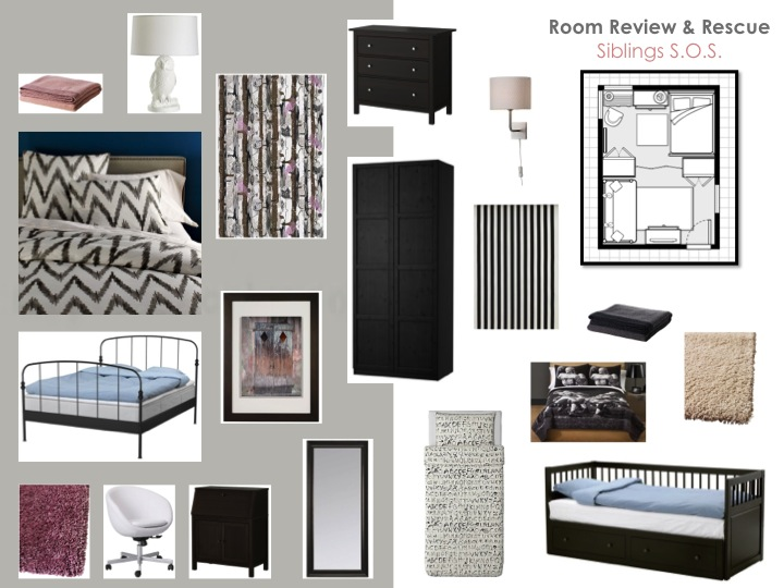 Room review and rescue sibling s o s interior design - Sherwin williams interior paint reviews ...